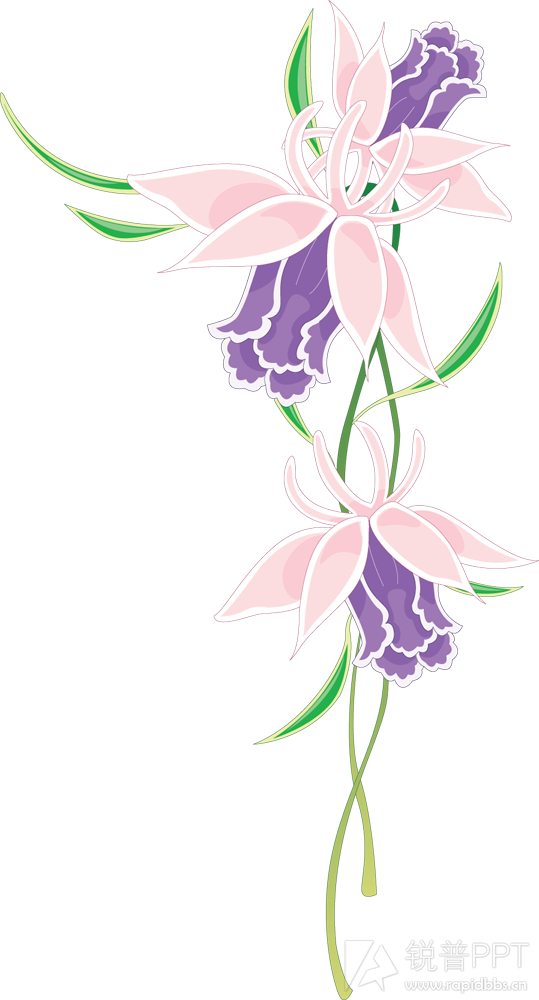 装饰花png免抠图素材