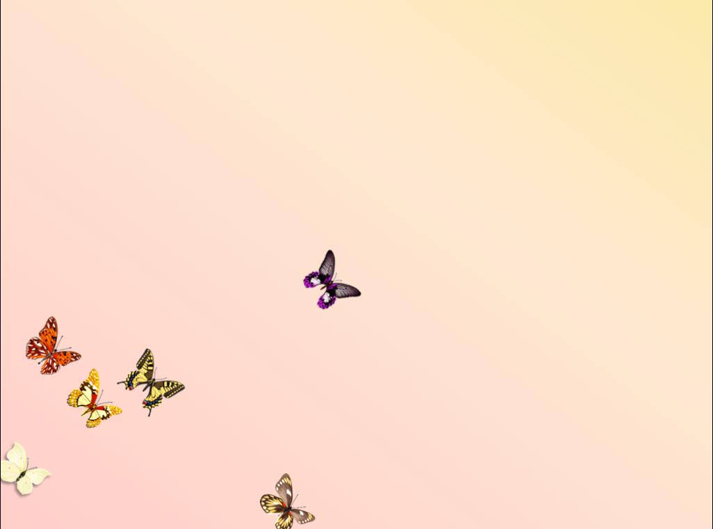 一个蝴蝶飞舞的ppt开场动画效果图片