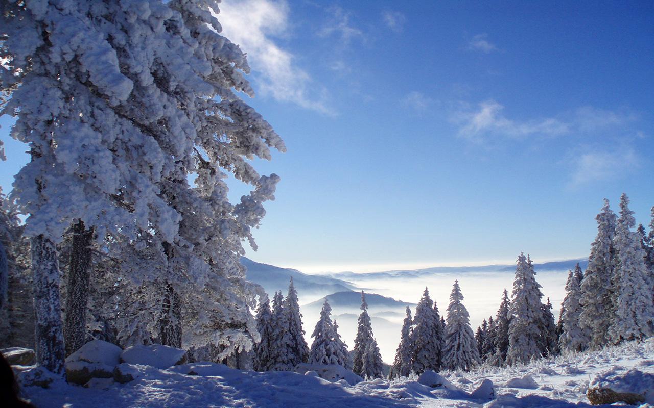 冬日雪景ppt素材图片