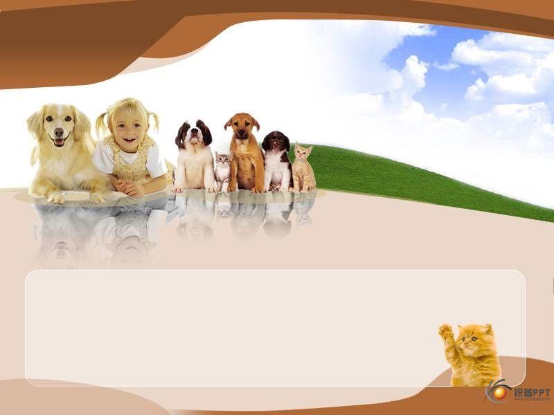 论坛广场 69 ppt素材区 69 ppt模板 69 小孩和宠物